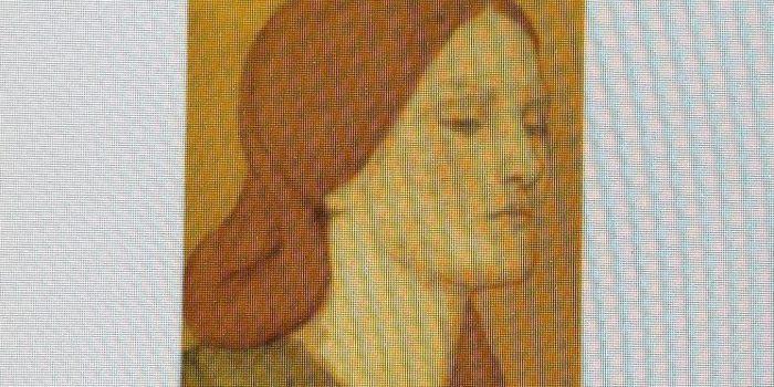 LITERATURA E HISTORIA DE LA INDUMENTARIA Y LOS TEXTILES:ANALISIS DE ALIAS GRACE